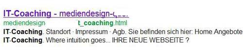 google-snippet-2